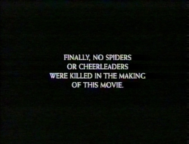 No Spiders or Cheerleaders