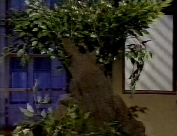 Rowland Rivron as a tree