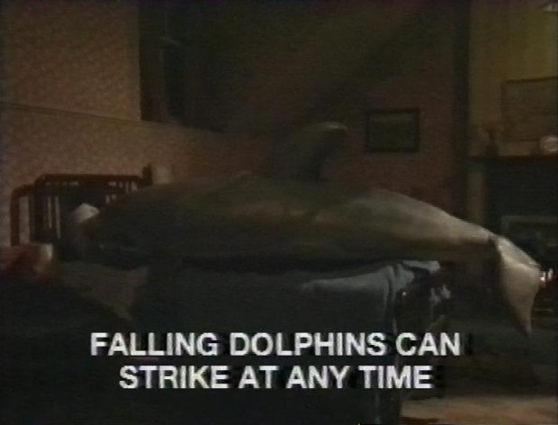 Falling Dolphins can strike at any time