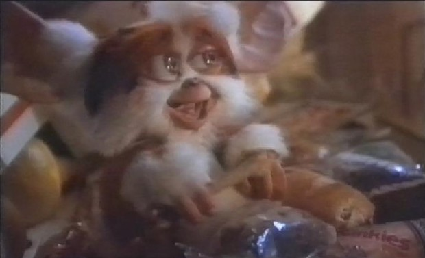 Not Gizmo