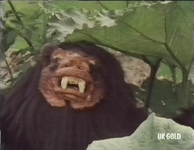 Taran Wood Beast
