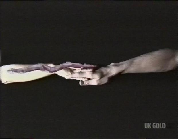 Snake Arms